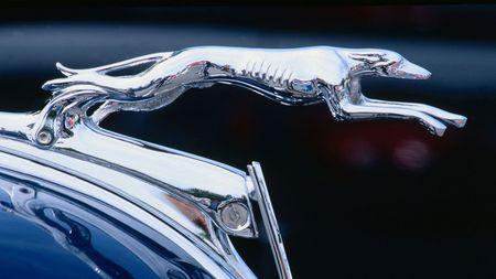 Kvíz pro automaniaky: Poznáte značku vozu podle symbolu na přídi? Schválně, kolik bodů z 10dáte!